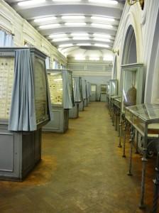 Musée zoologique de St-Petersburg