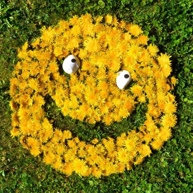 Dandelion Smiley