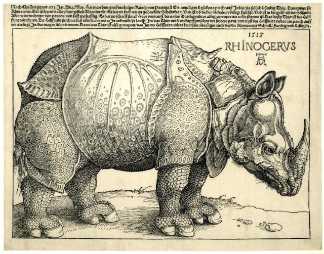 First edition of a broadside on a rhinoceros; with a woodcut of a rhinoceros standing in profile to the r, and five lines letterpress above. 1515 Woodcut and letterpress © The Trustees of the British Museum